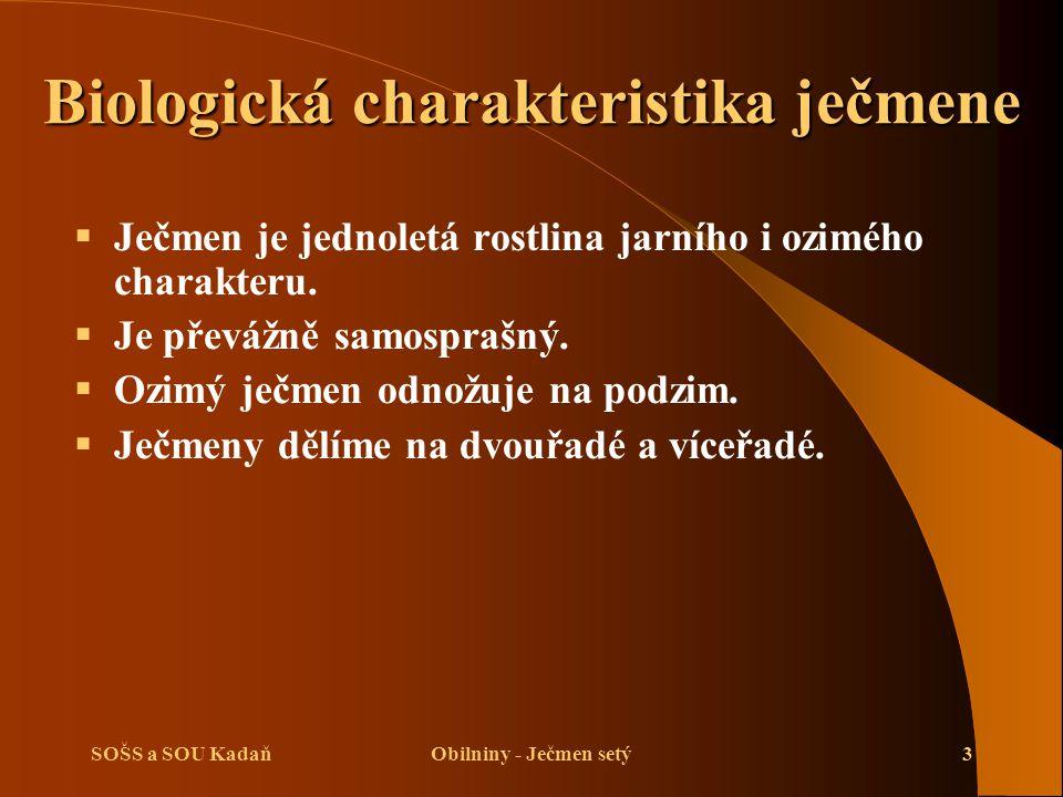 SOŠS a SOU KadaňObilniny - Ječmen setý3 Biologická charakteristika ječmene  Ječmen je jednoletá rostlina jarního i ozimého charakteru.  Je převážně