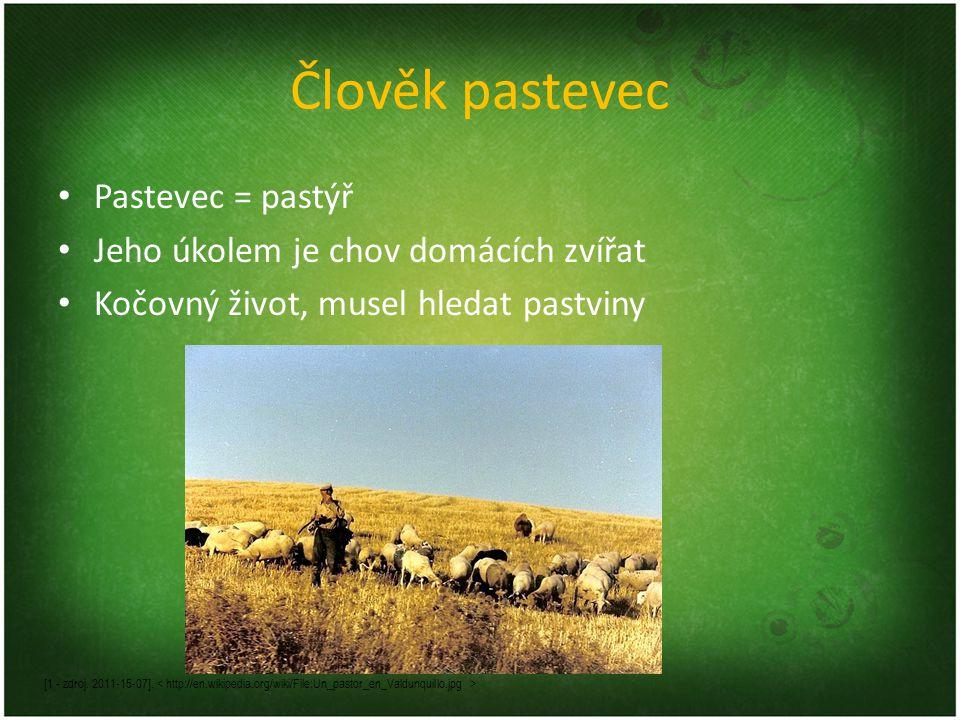 Člověk pastevec Pastevec = pastýř Jeho úkolem je chov domácích zvířat Kočovný život, musel hledat pastviny [1 - zdroj.