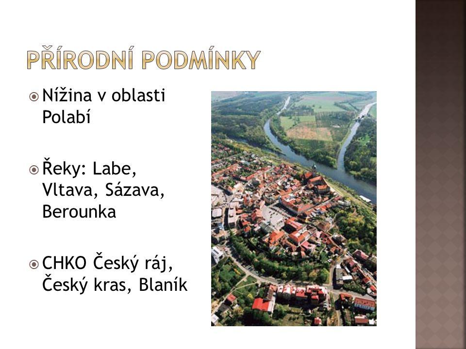  Nížina v oblasti Polabí  Řeky: Labe, Vltava, Sázava, Berounka  CHKO Český ráj, Český kras, Blaník