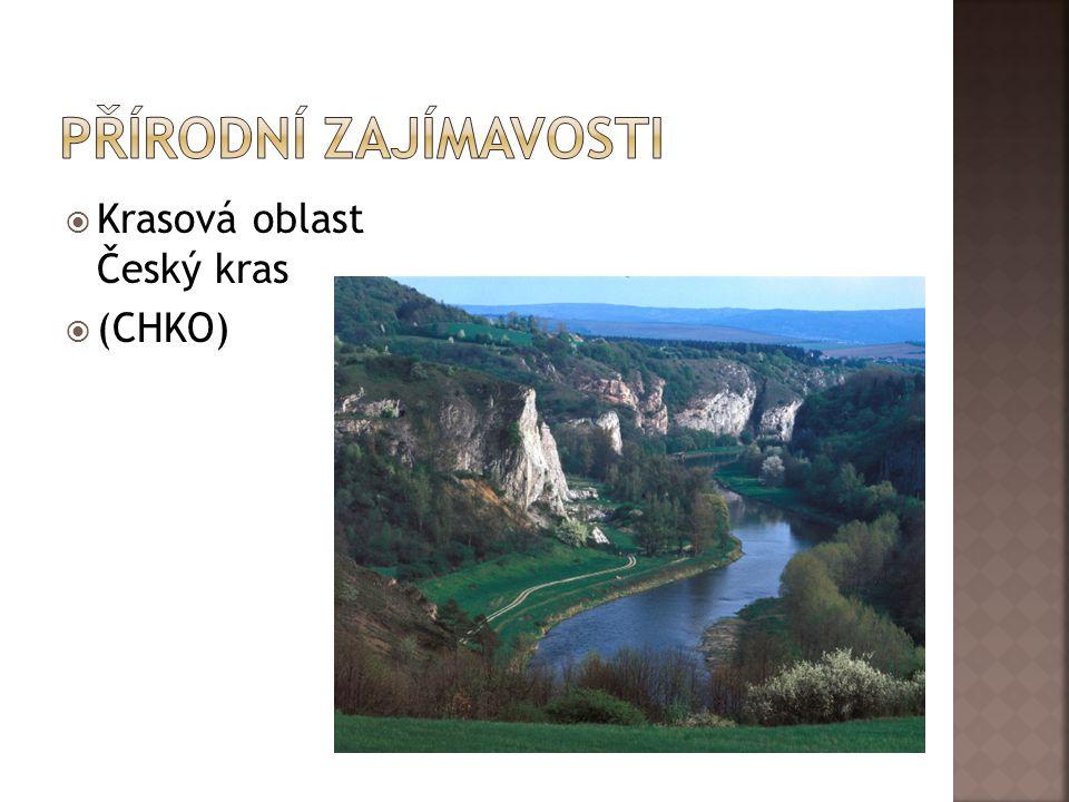  Krasová oblast Český kras  (CHKO)