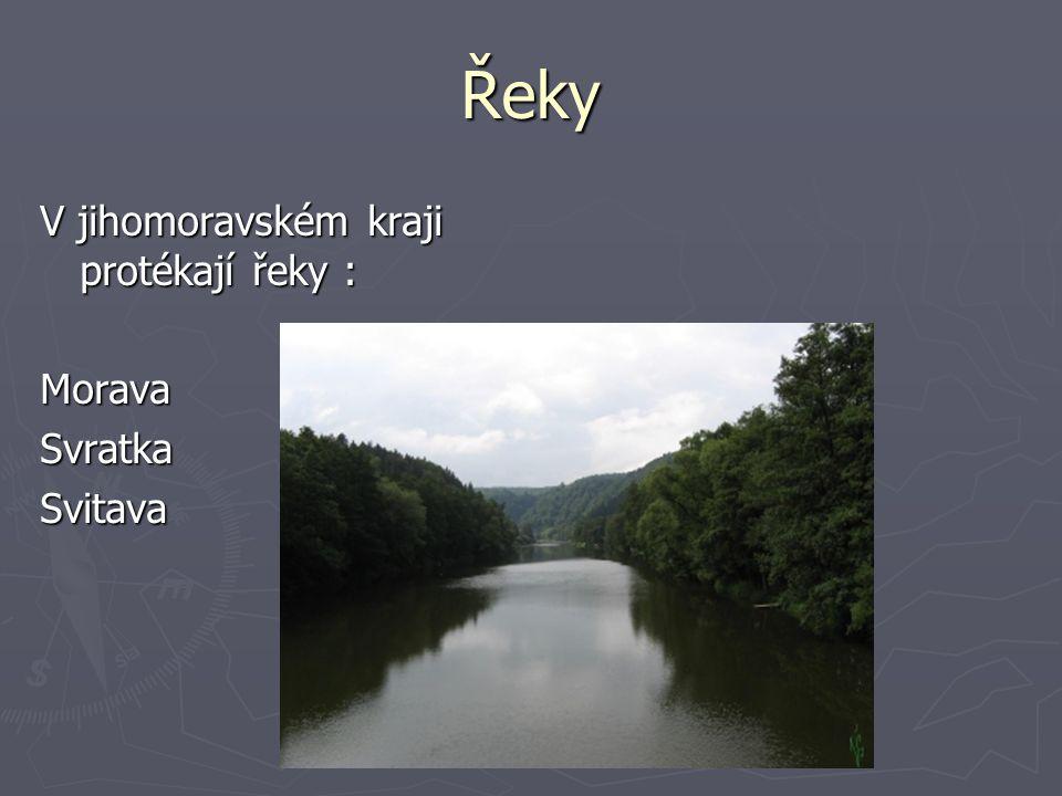 Řeky V jihomoravském kraji protékají řeky : MoravaSvratkaSvitava