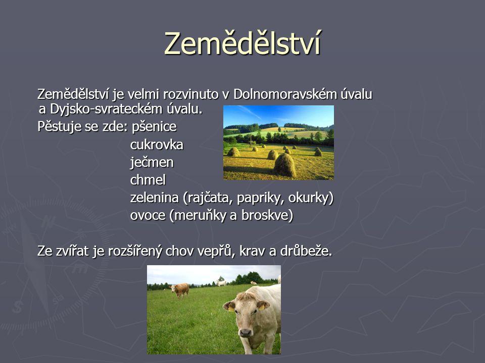 Zemědělství Zemědělství je velmi rozvinuto v Dolnomoravském úvalu a Dyjsko-svrateckém úvalu. Zemědělství je velmi rozvinuto v Dolnomoravském úvalu a D