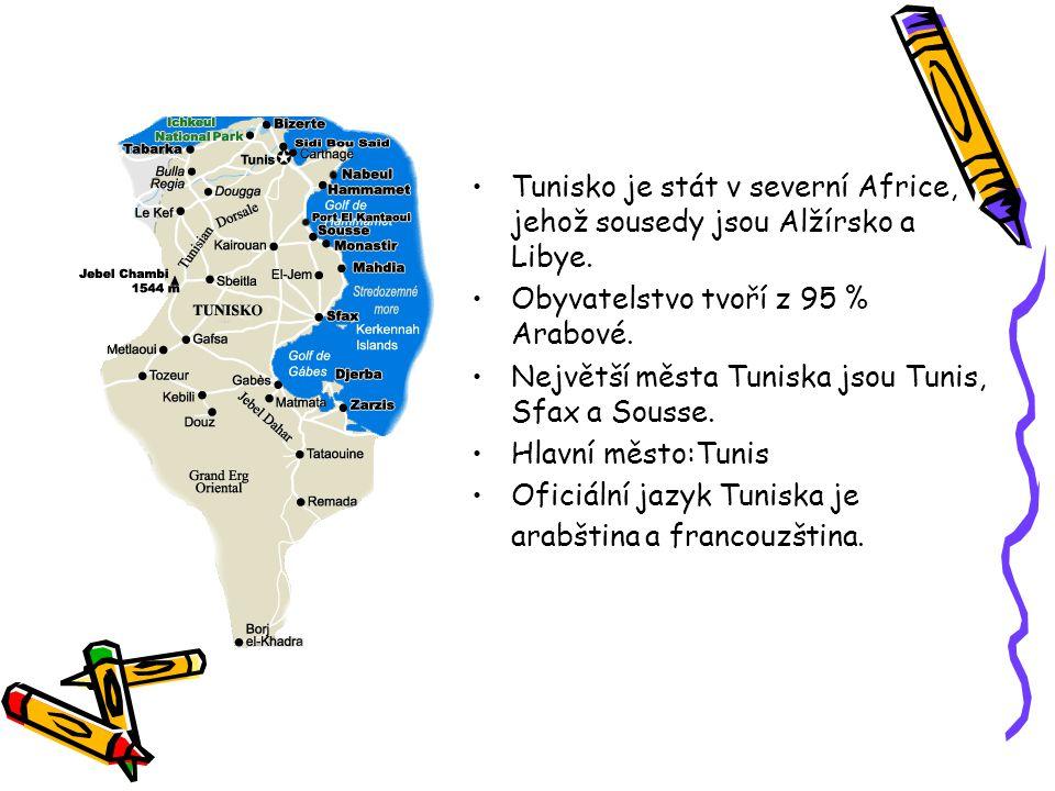 Tunisko je stát v severní Africe, jehož sousedy jsou Alžírsko a Libye. Obyvatelstvo tvoří z 95 % Arabové. Největší města Tuniska jsou Tunis, Sfax a So
