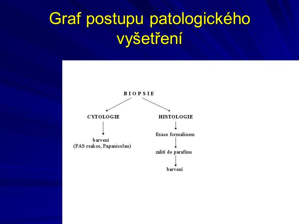 Graf postupu patologického vyšetření