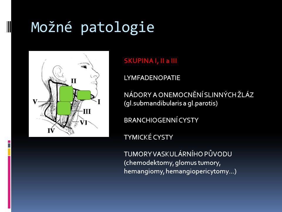 Možné patologie SKUPINA I, II a III LYMFADENOPATIE NÁDORY A ONEMOCNĚNÍ SLINNÝCH ŽLÁZ (gl.submandibularis a gl.parotis) BRANCHIOGENNÍ CYSTY TYMICKÉ CYS