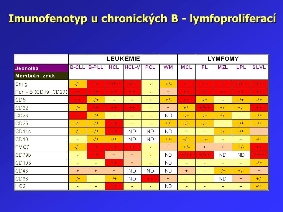 Imunofenotyp u chronických B - lymfoproliferací