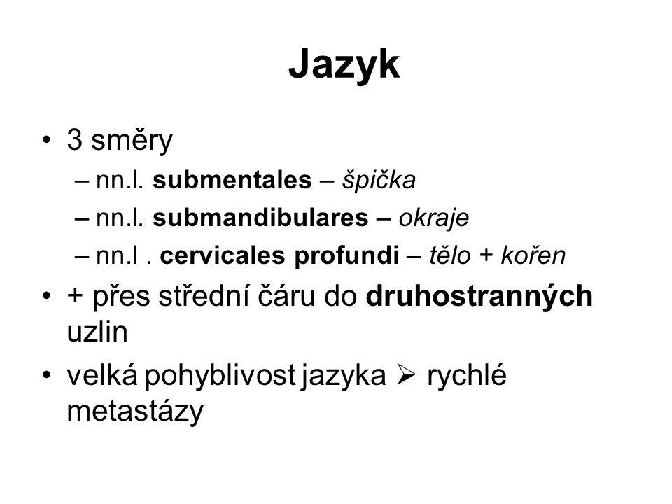 Jazyk 3 směry –nn.l.submentales – špička –nn.l. submandibulares – okraje –nn.l.