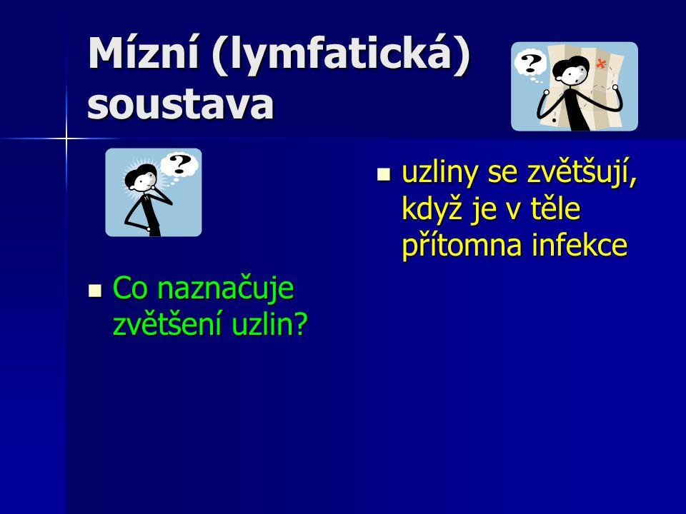 Mízní (lymfatická) soustava Co naznačuje zvětšení uzlin? Co naznačuje zvětšení uzlin? uzliny se zvětšují, když je v těle přítomna infekce uzliny se zv