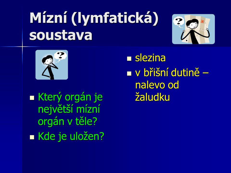 Použitá literatura Vaněčková, I.; Skýbová, J.; Markvartová, D.; Hejda, T.: Přírodopis 8.