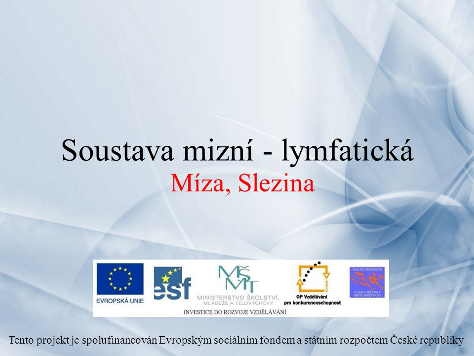 Soustava mizní - lymfatická Míza, Slezina Tento projekt je spolufinancován Evropským sociálním fondem a státním rozpočtem České republiky