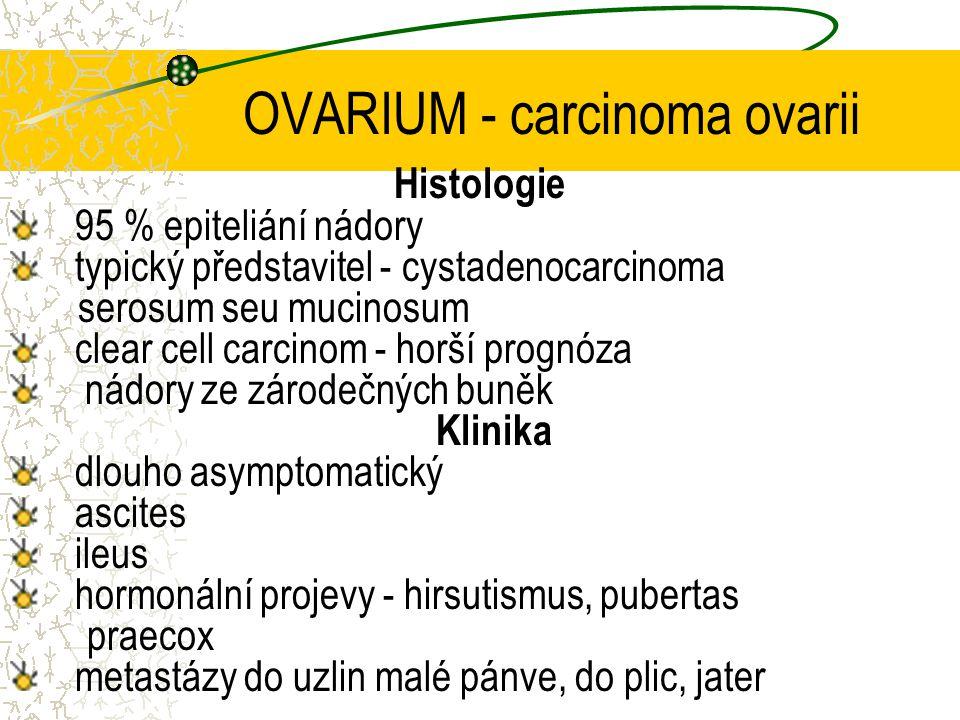 OVARIUM - carcinoma ovarii Histologie 95 % epiteliání nádory typický představitel - cystadenocarcinoma serosum seu mucinosum clear cell carcinom - hor
