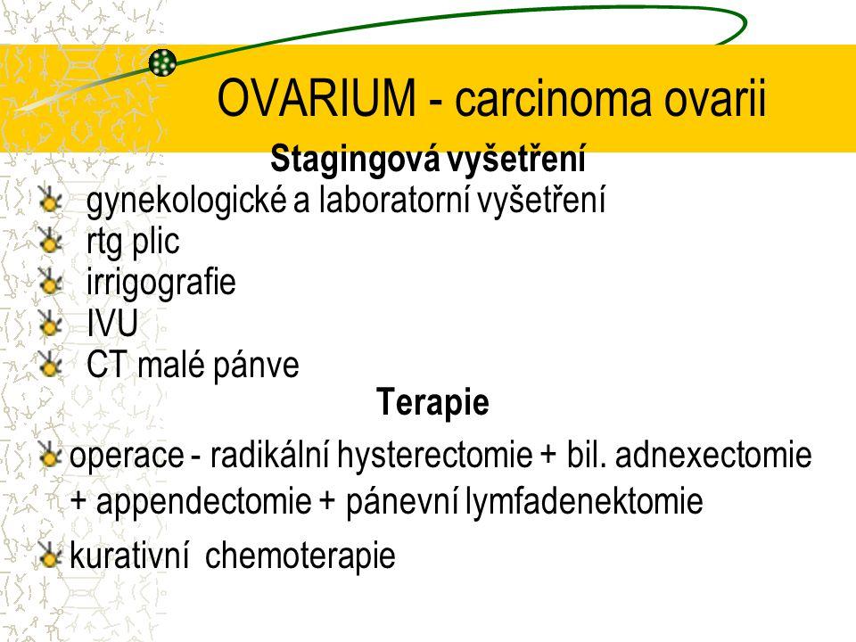 OVARIUM - carcinoma ovarii Stagingová vyšetření gynekologické a laboratorní vyšetření rtg plic irrigografie IVU CT malé pánve Terapie operace - radiká