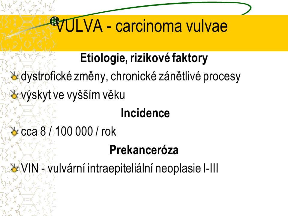 VULVA - carcinoma vulvae Histologie spinocelulární karcinom, rohovějící basaliom vulvy melanom vulvy Klinika tuhý, vyvýšený infiltrát tendence k povrchové ulceraci putridní zápach destrukce vulvy, vaginy, perianální krajiny meta - inguin., uzliny malé pánve, plíce, játra