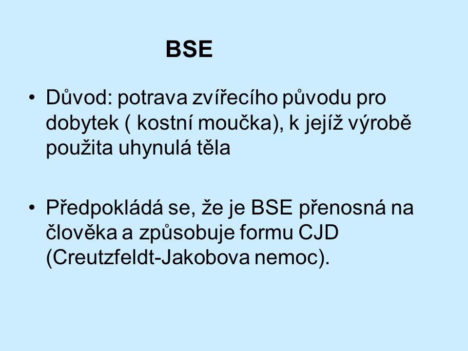 BSE Bovinní Spongiformní Encephalopathie snížení produkce mléka, třas, poruchy koordinace atd. poprvé popsána ve Velké Británii v roce 1985