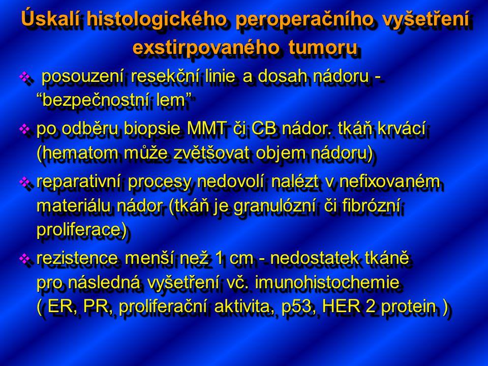 """Úskalí histologického peroperačního vyšetření exstirpovaného tumoru  posouzení resekční linie a dosah nádoru - """"bezpečnostní lem""""  po odběru biopsie"""