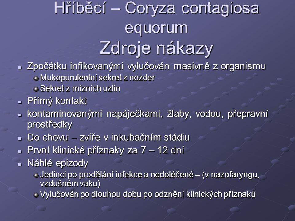 Hříběcí – Coryza contagiosa equorum Zdroje nákazy Zpočátku infikovanými vylučován masivně z organismu Zpočátku infikovanými vylučován masivně z organi