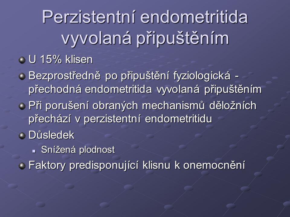 Perzistentní endometritida vyvolaná připuštěním U 15% klisen Bezprostředně po připuštění fyziologická - přechodná endometritida vyvolaná připuštěním P