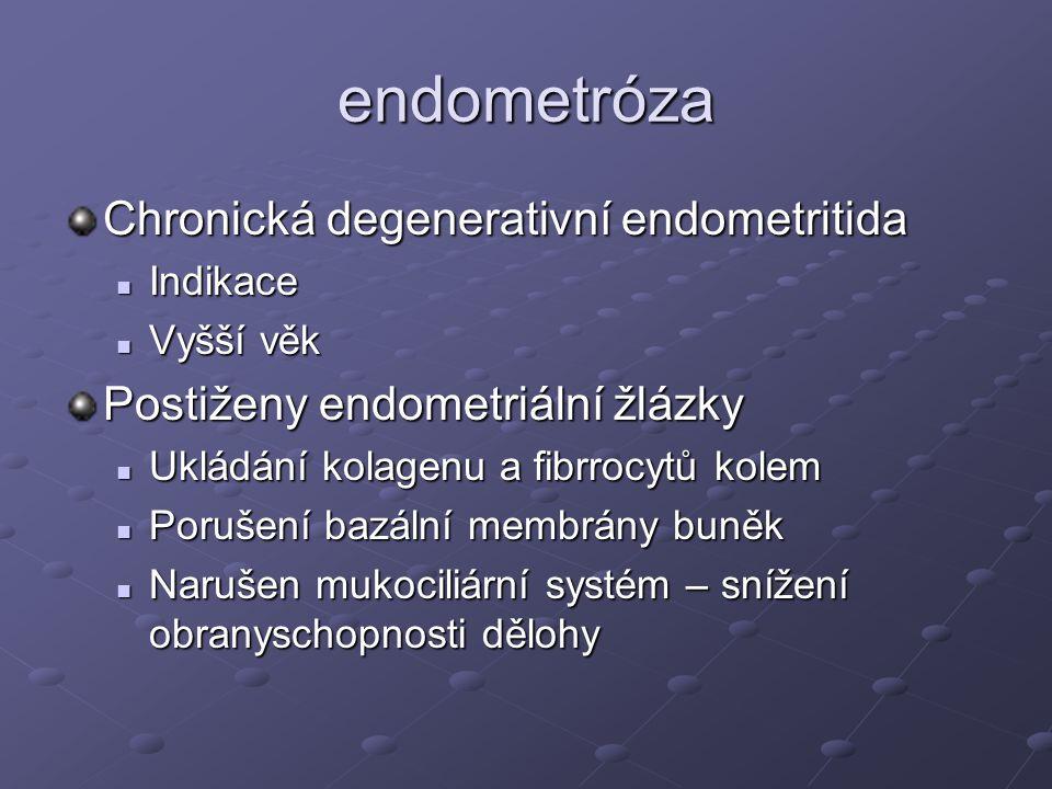 endometróza Chronická degenerativní endometritida Indikace Indikace Vyšší věk Vyšší věk Postiženy endometriální žlázky Ukládání kolagenu a fibrrocytů