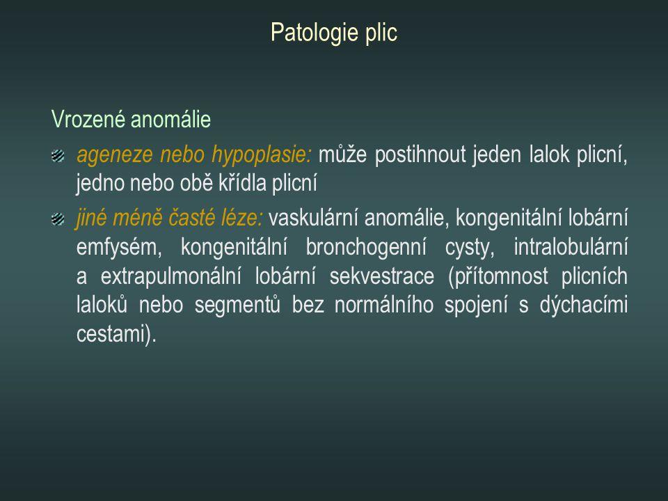 Vrozené anomálie ageneze nebo hypoplasie: může postihnout jeden lalok plicní, jedno nebo obě křídla plicní jiné méně časté léze: vaskulární anomálie,
