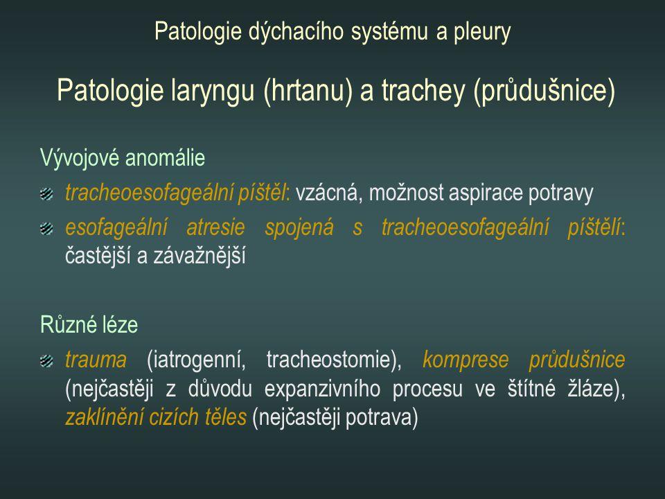 Patologie laryngu (hrtanu) a trachey (průdušnice) Vývojové anomálie tracheoesofageální píštěl : vzácná, možnost aspirace potravy esofageální atresie s