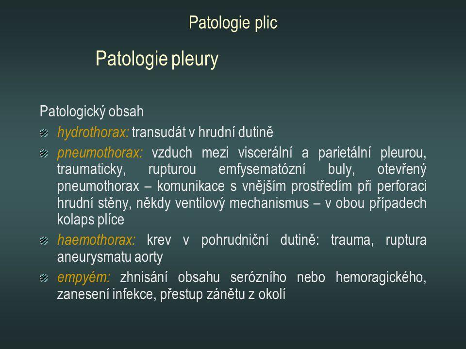 Patologie plic Patologický obsah hydrothorax: transudát v hrudní dutině pneumothorax: vzduch mezi viscerální a parietální pleurou, traumaticky, ruptur