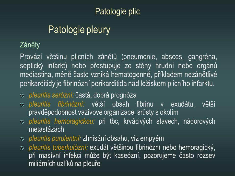 pleuritis serózní: častá, dobrá prognóza pleuritis fibrinózní: větší obsah fibrinu v exudátu, větší pravděpodobnost vazivové organizace, srůsty s okol