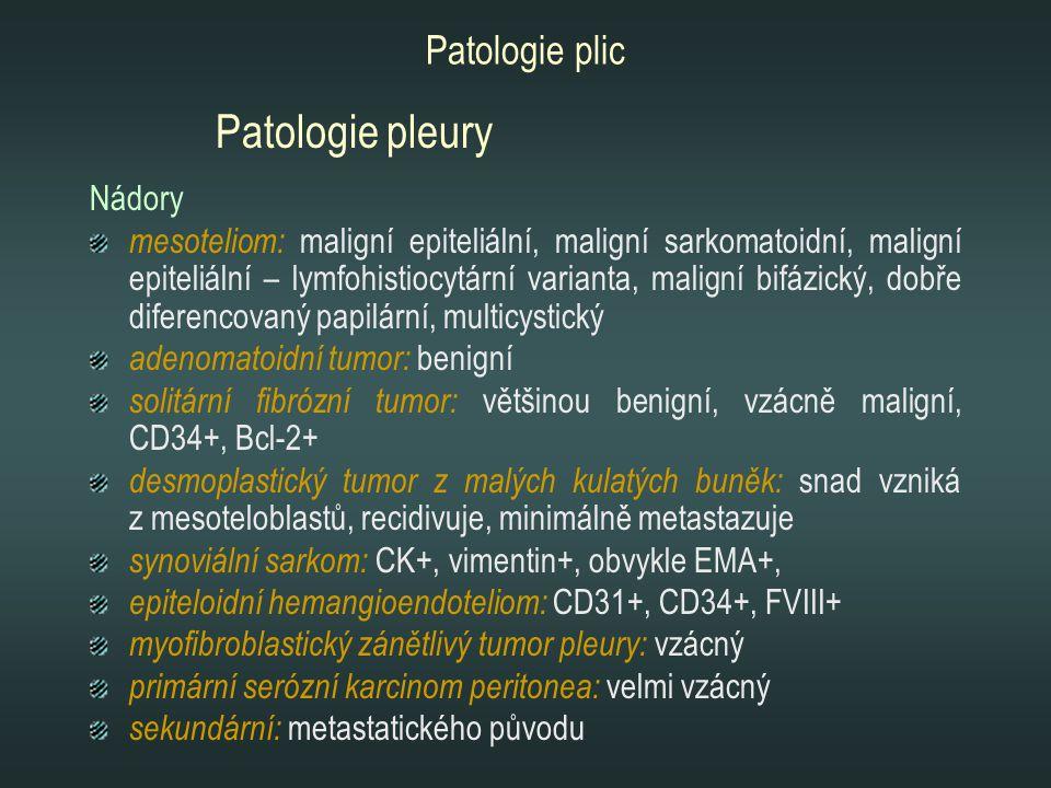 Nádory mesoteliom: maligní epiteliální, maligní sarkomatoidní, maligní epiteliální – lymfohistiocytární varianta, maligní bifázický, dobře diferencova
