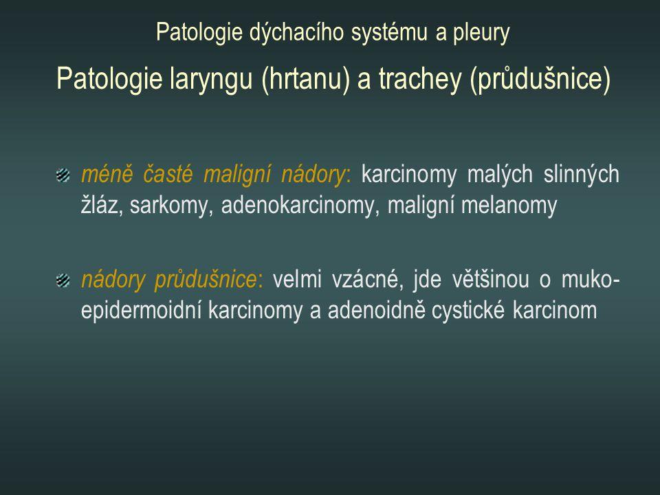 méně časté maligní nádory : karcinomy malých slinných žláz, sarkomy, adenokarcinomy, maligní melanomy nádory průdušnice : velmi vzácné, jde většinou o