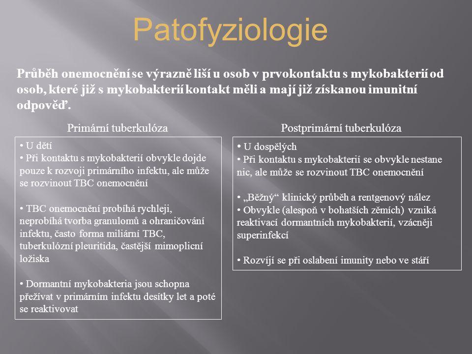 Patofyziologie Průběh onemocnění se výrazně liší u osob v prvokontaktu s mykobakterií od osob, které již s mykobakterií kontakt měli a mají již získanou imunitní odpověď.
