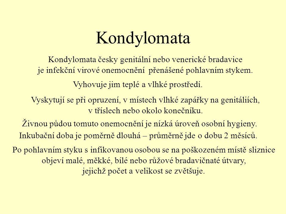 Kondylomata Kondylomata česky genitální nebo venerické bradavice je infekční virové onemocnění přenášené pohlavním stykem.