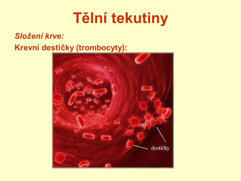 Tělní tekutiny Složení krve: Krevní destičky (trombocyty):