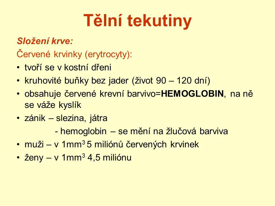Tělní tekutiny Složení krve: Červené krvinky (erytrocyty): tvoří se v kostní dřeni kruhovité buňky bez jader (život 90 – 120 dní) obsahuje červené kre