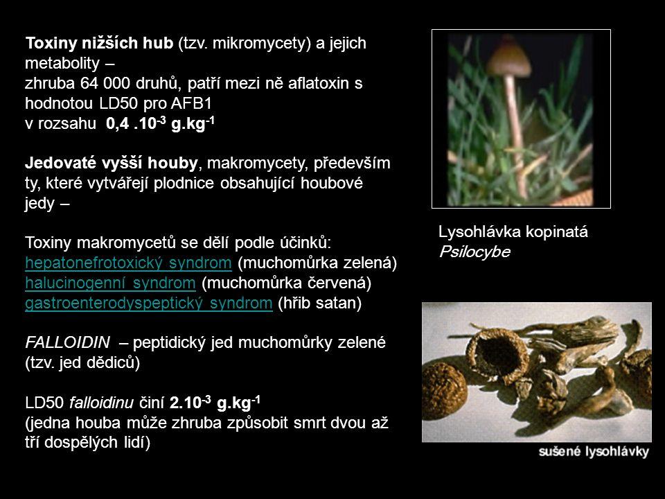 Toxiny nižších hub (tzv.