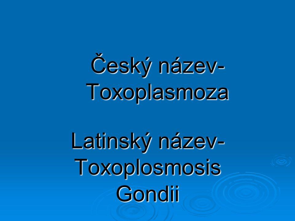 Český název- Toxoplasmoza Latinský název- Toxoplosmosis Gondii