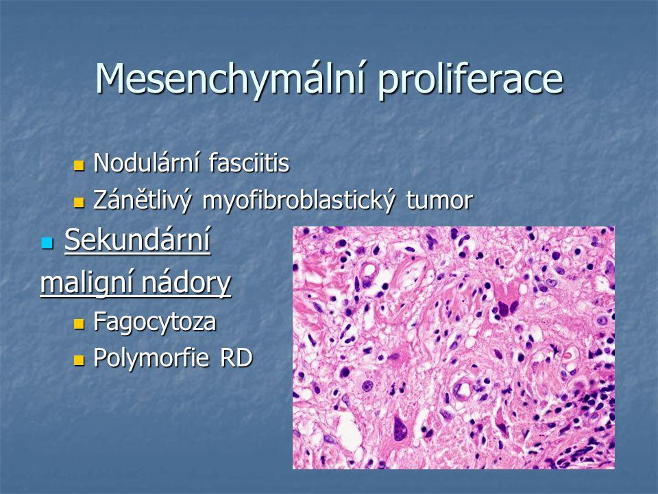 Mesenchymální proliferace Nodulární fasciitis Nodulární fasciitis Zánětlivý myofibroblastický tumor Zánětlivý myofibroblastický tumor Sekundární Sekun