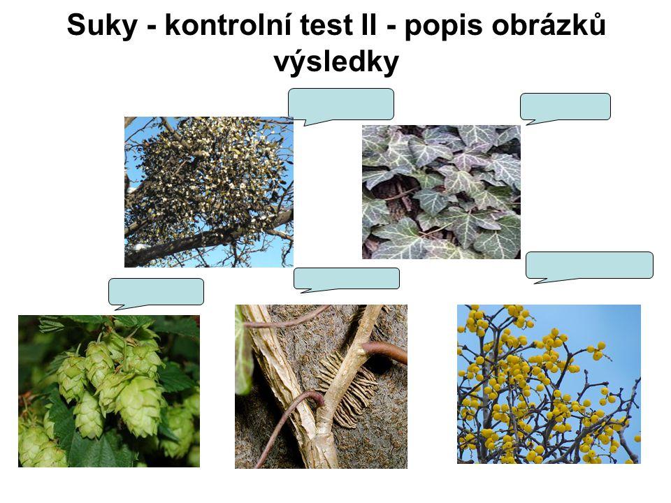 Suky - kontrolní test II - popis obrázků výsledky