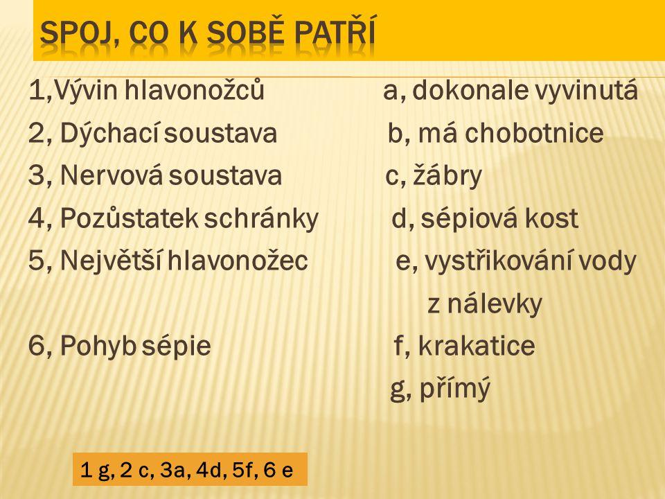 1,Vývin hlavonožců a, dokonale vyvinutá 2, Dýchací soustava b, má chobotnice 3, Nervová soustava c, žábry 4, Pozůstatek schránky d, sépiová kost 5, Ne