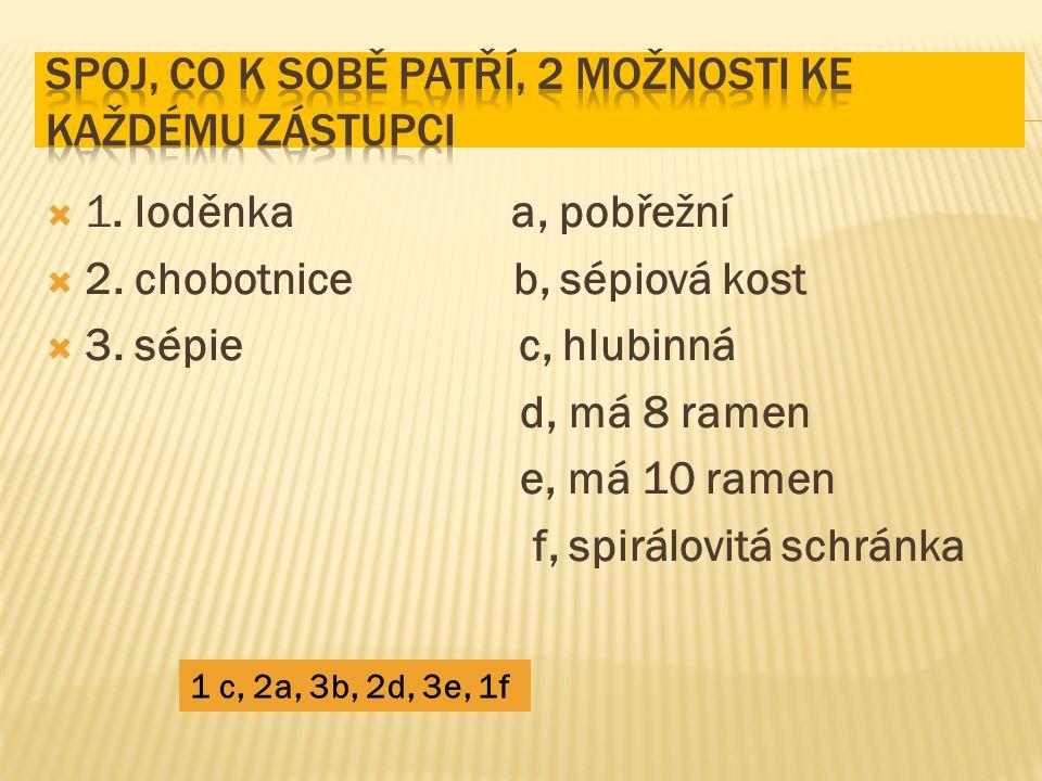  1. loděnka a, pobřežní  2. chobotnice b, sépiová kost  3. sépie c, hlubinná d, má 8 ramen e, má 10 ramen f, spirálovitá schránka 1 c, 2a, 3b, 2d,