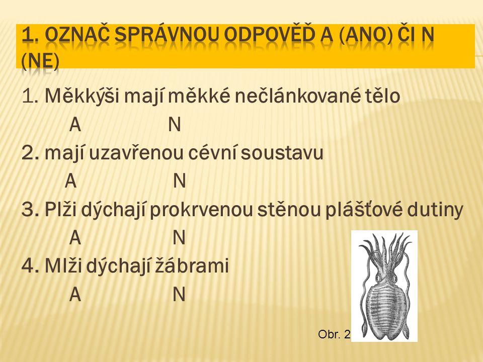 1. Měkkýši mají měkké nečlánkované tělo A N 2. mají uzavřenou cévní soustavu A N 3. Plži dýchají prokrvenou stěnou plášťové dutiny A N 4. Mlži dýchají