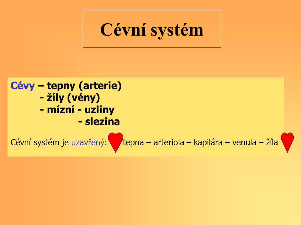 Cévní systém Cévy – tepny (arterie) - žíly (vény) - mízní - uzliny - slezina Cévní systém je uzavřený: tepna – arteriola – kapilára – venula – žíla