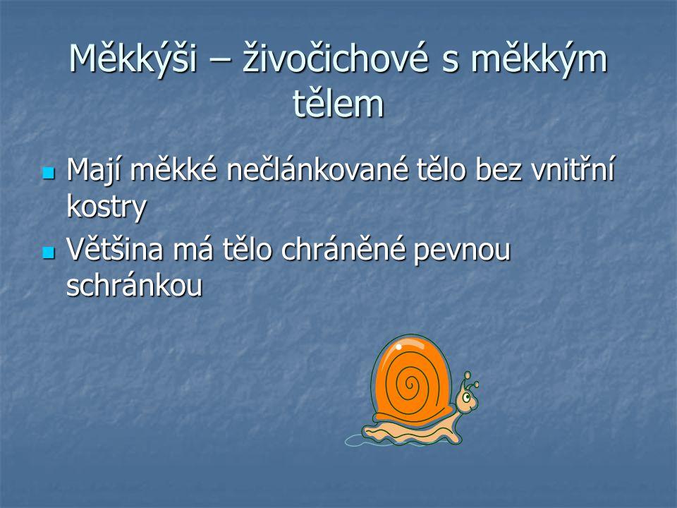 Mlži Sladkovodní i mořští měkkýši se schránkou, kterou tvoří dvě lastury Sladkovodní i mořští měkkýši se schránkou, kterou tvoří dvě lastury Zástupcem sladkovodních mlžů je škeble rybničná Zástupcem sladkovodních mlžů je škeble rybničná