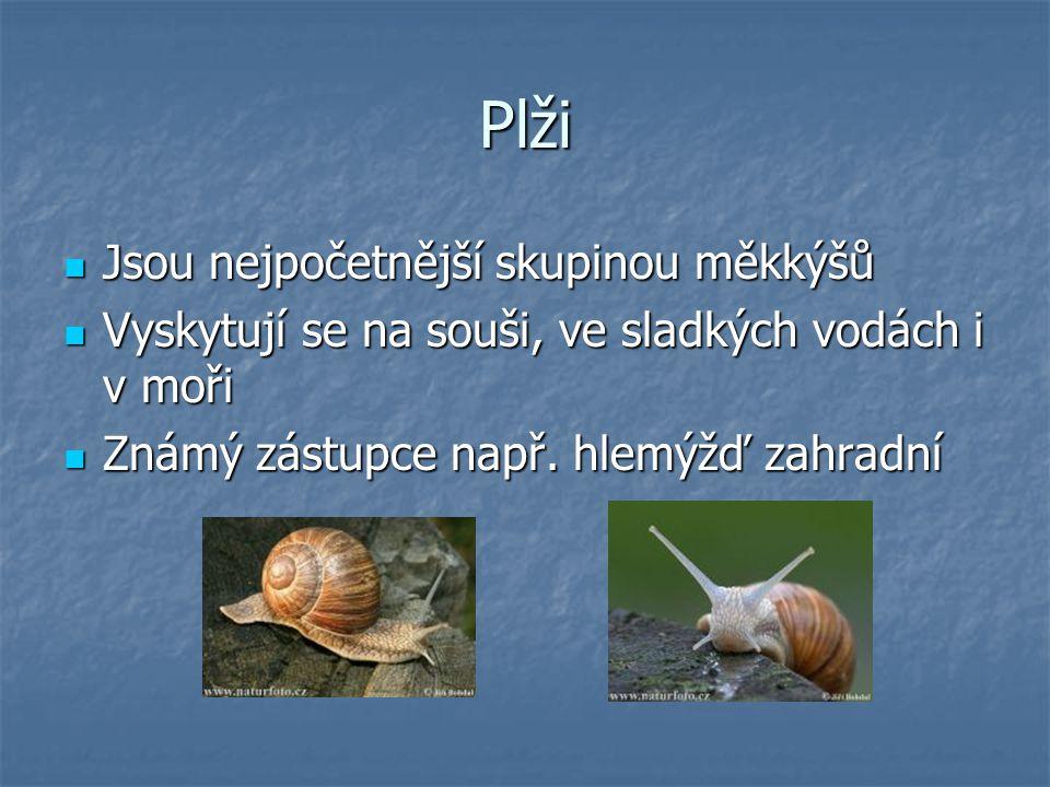 Mlži - zástupci Vyhledejte v učebnici a na internetu obrázky těchto druhů a doplňte, zda žijí v mořích či slané vodě: Perlotvorka mořská…………………………………….