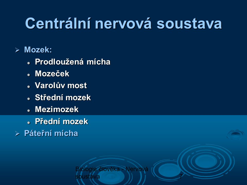 7 Centrální nervová soustava  Mozek: Prodloužená mícha Prodloužená mícha Mozeček Mozeček Varolův most Varolův most Střední mozek Střední mozek Mezimo