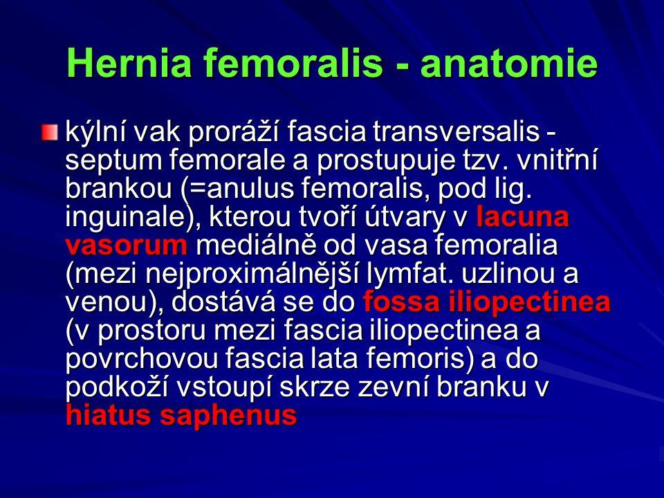 Hernia femoralis - anatomie kýlní vak proráží fascia transversalis - septum femorale a prostupuje tzv. vnitřní brankou (=anulus femoralis, pod lig. in