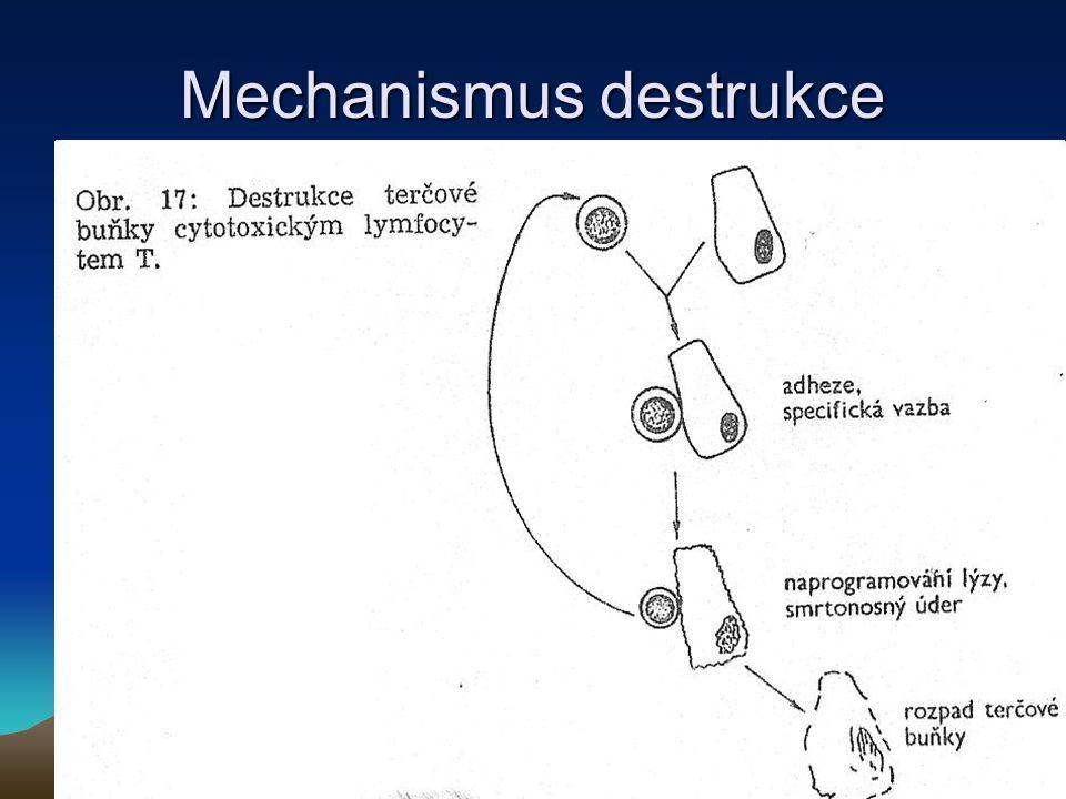 Mechanismus destrukce