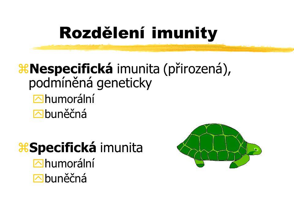 Rozdělení imunity zNespecifická imunita (přirozená), podmíněná geneticky yhumorální ybuněčná zSpecifická imunita yhumorální ybuněčná