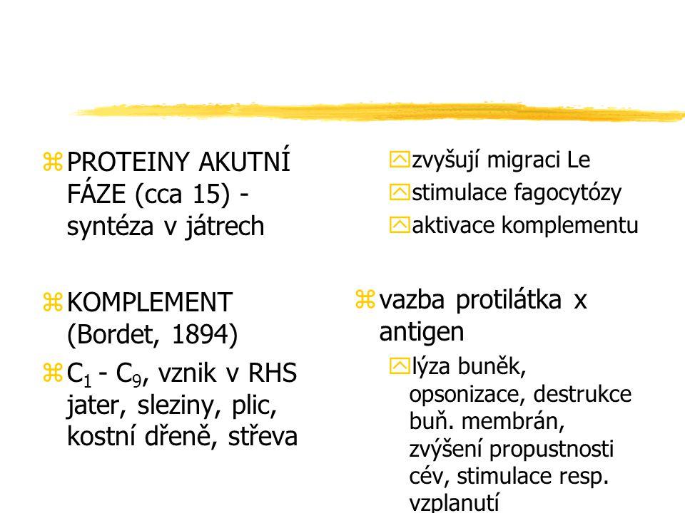 zPROTEINY AKUTNÍ FÁZE (cca 15) - syntéza v játrech zKOMPLEMENT (Bordet, 1894) zC 1 - C 9, vznik v RHS jater, sleziny, plic, kostní dřeně, střeva yzvyš