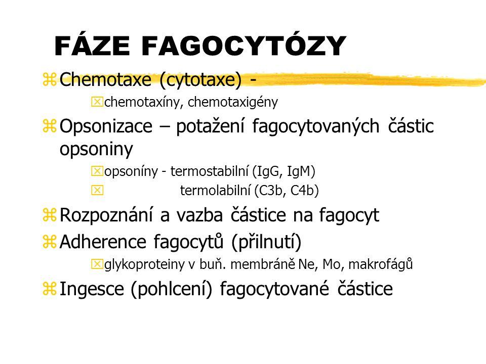 FÁZE FAGOCYTÓZY zChemotaxe (cytotaxe) - xchemotaxíny, chemotaxigény zOpsonizace – potažení fagocytovaných částic opsoniny xopsoníny - termostabilní (I
