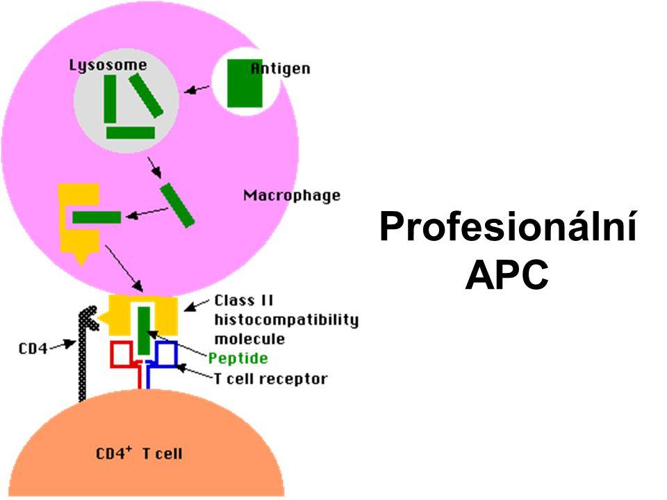 Profesionální APC