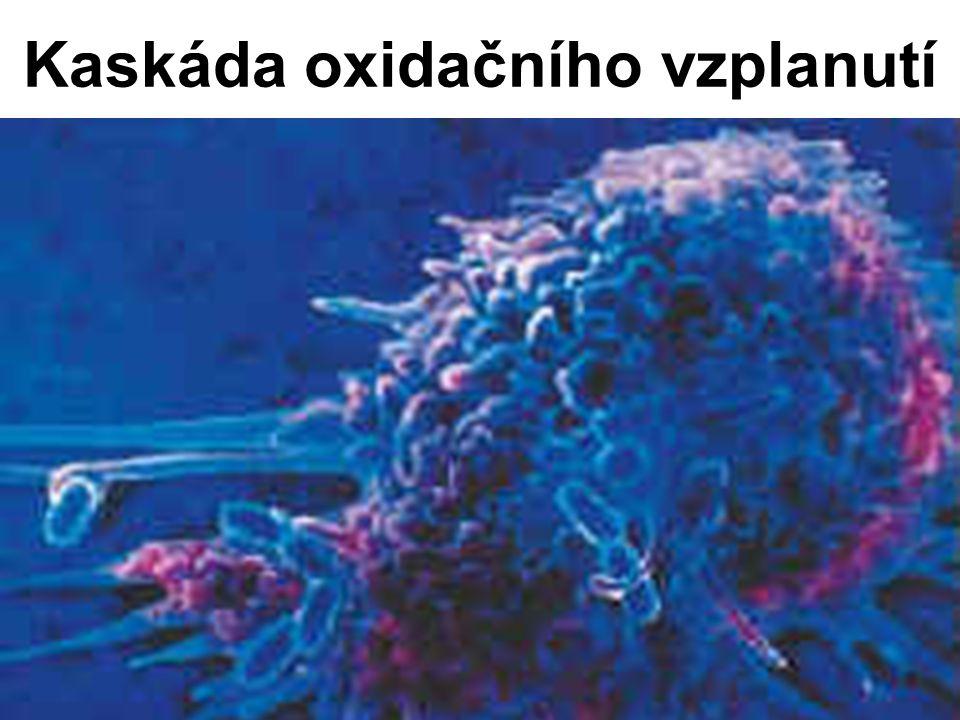 Kaskáda oxidačního vzplanutí
